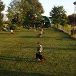 Campo-addestramento-esterno-Brescia-Argo-Squadra-2